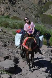 Fiona on a donkey